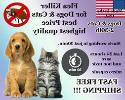 100 Capsules Instant Flea Killer Control small Dogs 2-30lb +