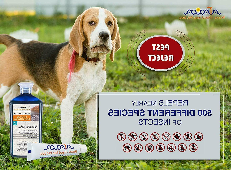 Natural Prevention for Dogs Arava