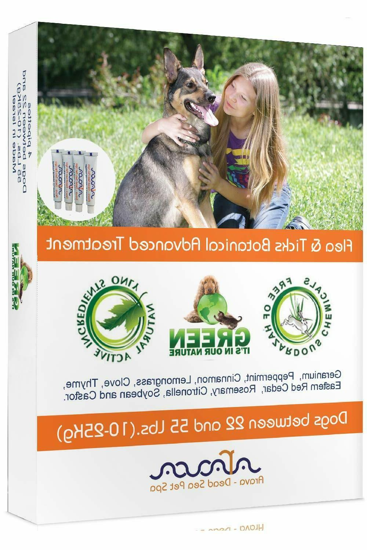 Natural Tick Prevention Dogs Shampoo Arava