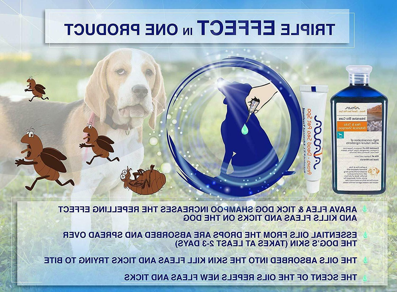 Natural Prevention for Medium Dogs & Arava