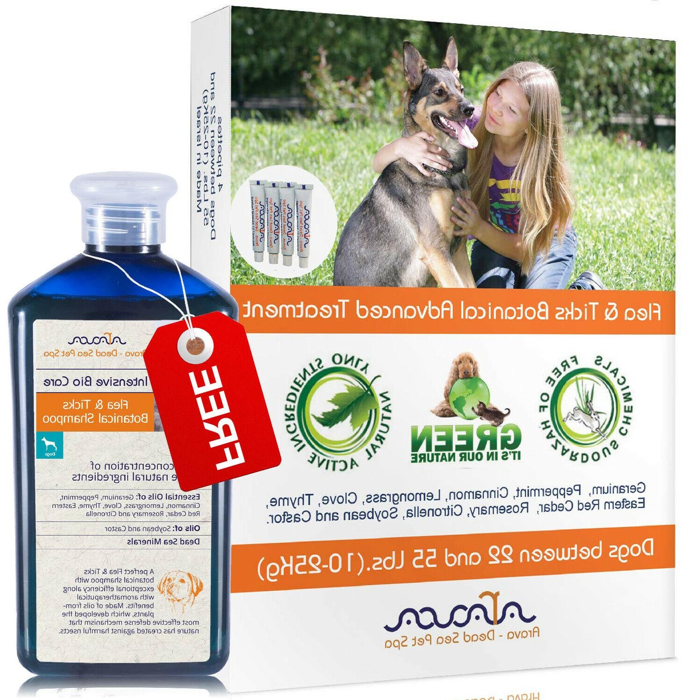 natural flea and tick prevention control