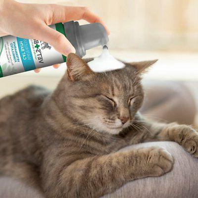 Vet's Best Clean Waterless Formula,
